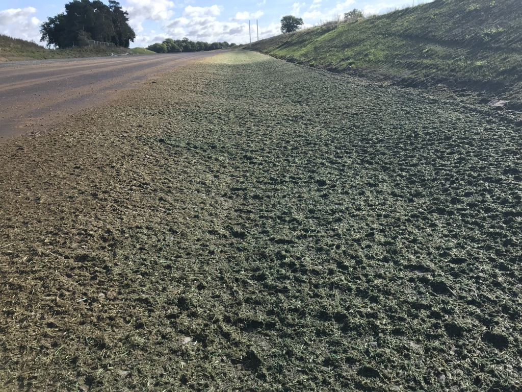 Swales over-sprayed with TerrAffix as part of hydroseeding mix