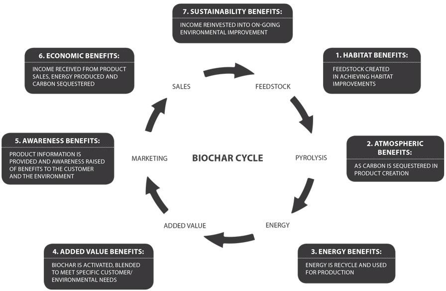 biochar life cycle