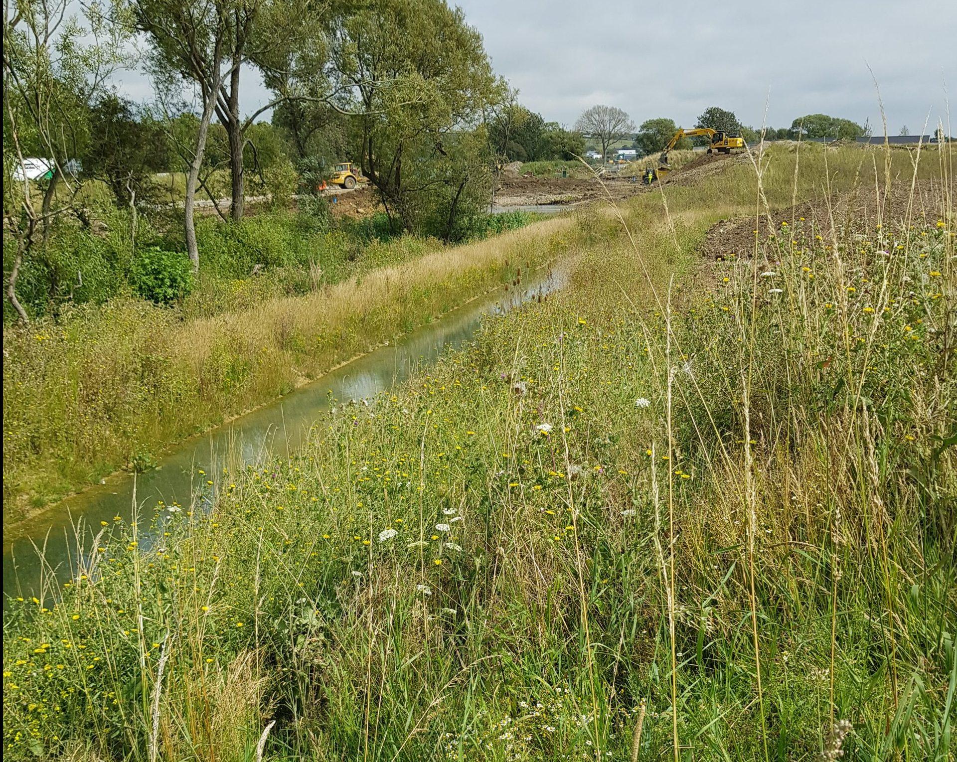 Vegetated steep embankments